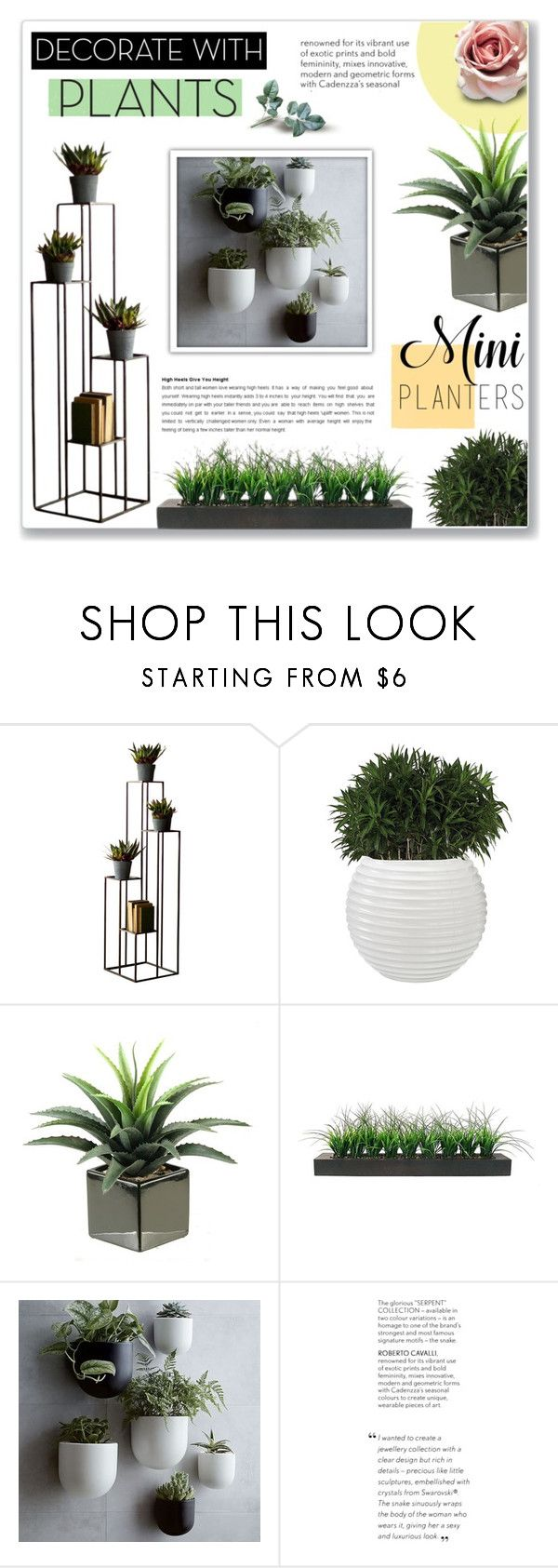 """Decorate With Plants"" by achernar ❤ liked on Polyvore featuring interior, interiors, interior design, home, home decor, interior decorating, Dot & Bo, Vintage, West Elm and plants"