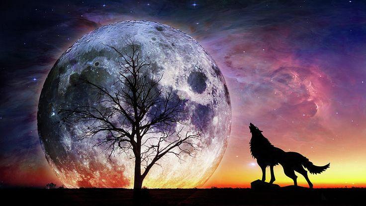 Fantasy fine art print - Howling Wolf at huge moon in unrealistic cosmic landscape
