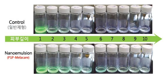 Story Of P1P :: P1P 미백기능성 앰플(화장품)의 효능원리와 피부투과 촉진 시스템