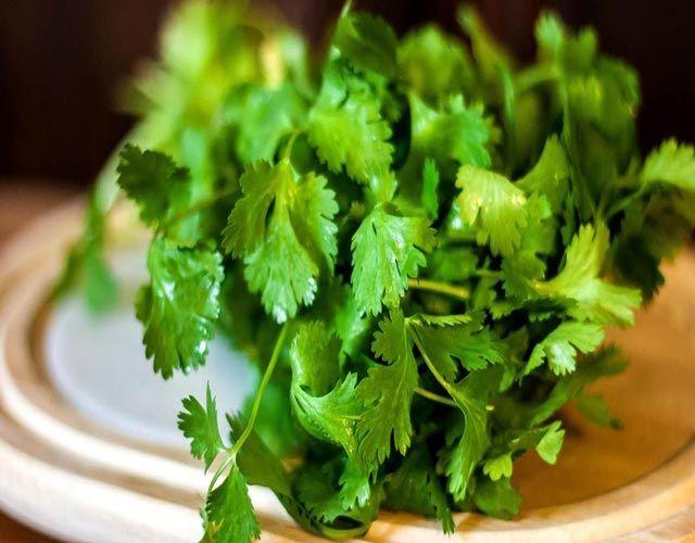 Como usar el cilantro |  Cilantro, Salud, Hierbas