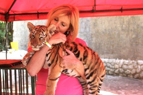 Puerto Vallarta Zoo. I can't wait to hold some baby tigers :)