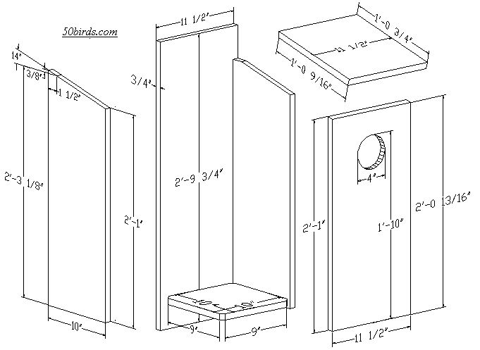 Pileated Woodpecker Feeder Plans - WoodWorking Projects