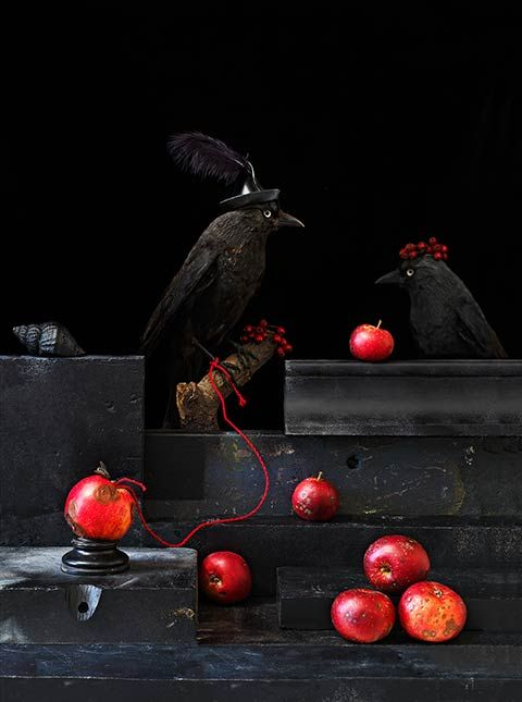 Paul Biddle's surreal still life photography