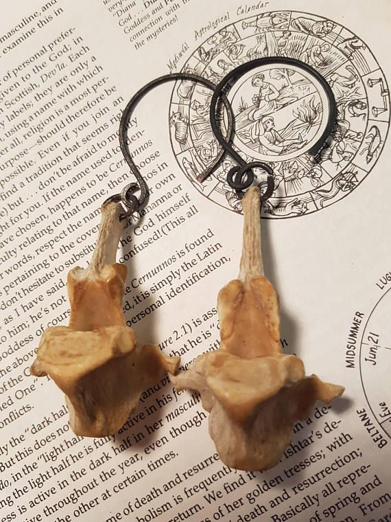 Check out this item in my Etsy shop https://www.etsy.com/au/listing/559737604/mama-goat-bone-vertabrae-ear