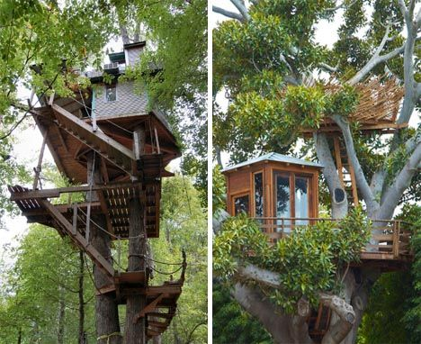 mine. mine.Awesome Trees, Favorite Places, Tree Houses, Dreams House, Trees House, Trees Home, Awesome Treehouse, Diy Treehouse, Unusual House