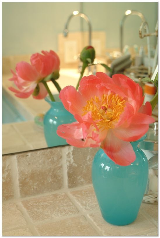 37 best Coral/Turquoise Bathroom images on Pinterest | Turquoise ...