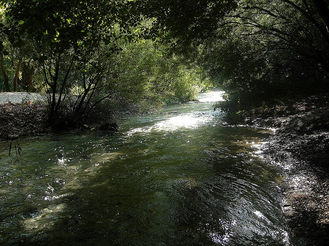 Acherontas River in the Region of Epirus www.house2book.com