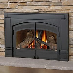 Napoleon GDI-30 Direct Vent Gas Fireplace Insert. I think I must have this!