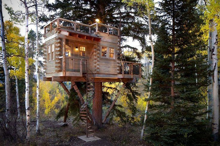 treehouse-grown-ups-01