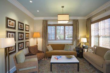 blue ceiling, contemporary living room