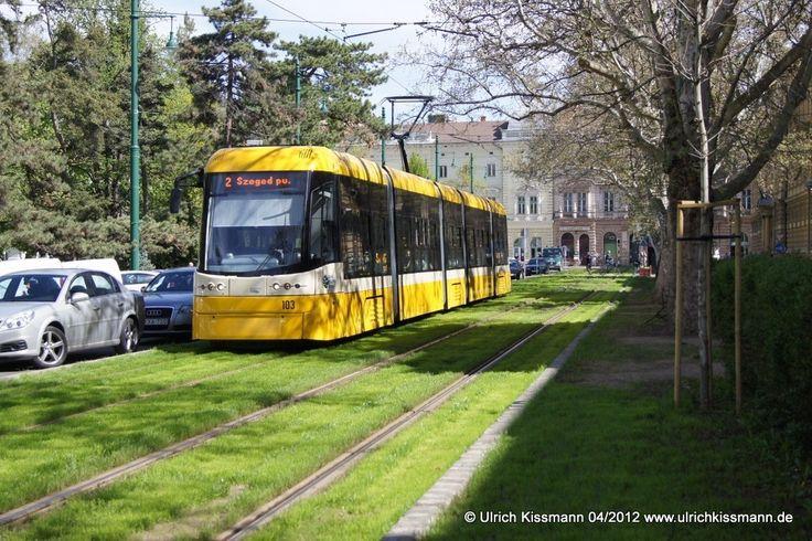 103 Szeged Széchenyi tér 20.04.2012 - Pesa 120Nb