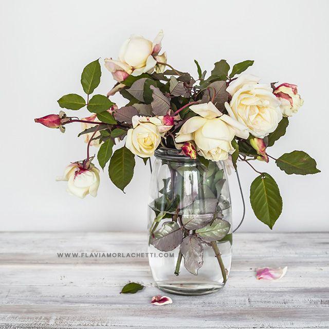 White roses in vase ~ Still life photography ~ www.flaviamorlachetti.com