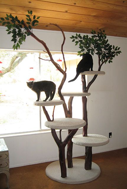 Love this tree branch cat tower