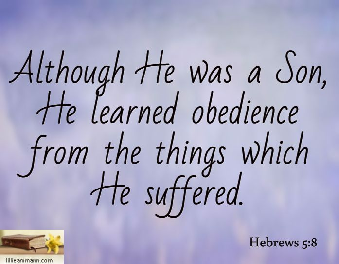 Although He was a Son, He learned obedience from the ...