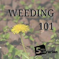 5 Minute Librarian: Weeding 101