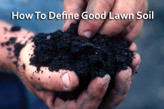 How To Define Good Lawn Soil - A Pantry Of Soil Rich Nutrients