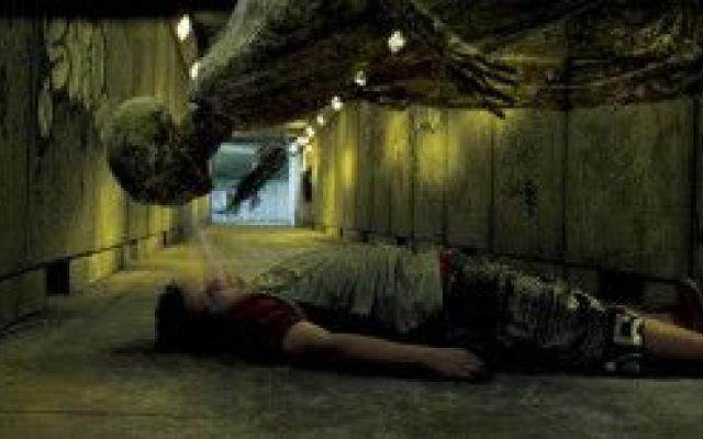 Vespa-dissennatore: esiste davvero! Vespe che succhiano la vita alle loro vittime come i dissennatori di Harry Potter (non a caso si chiamano Ampulex dementor), rane multicolor e pipistrelli con zanne da vampiro: nel Mekong i ricercato #wwf #biodiversità #vampiro