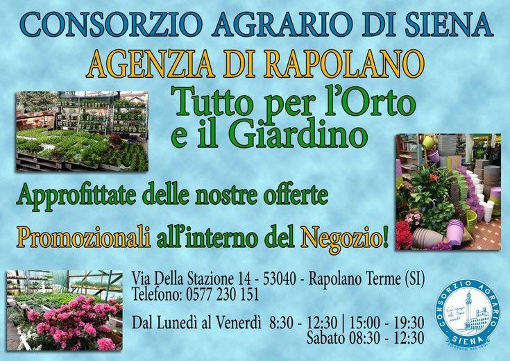 Consorzio Agrario di Siena - AGENZIA DI RAPOLANO Tutto per l'orto ed il giardino. Approfittate delle nostre offerte promozionali all'interno del Negozio. Vi aspettiamo!!!!! www.capsi.it
