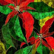 Mexican Poinsettia Crafts for Kids | eHow