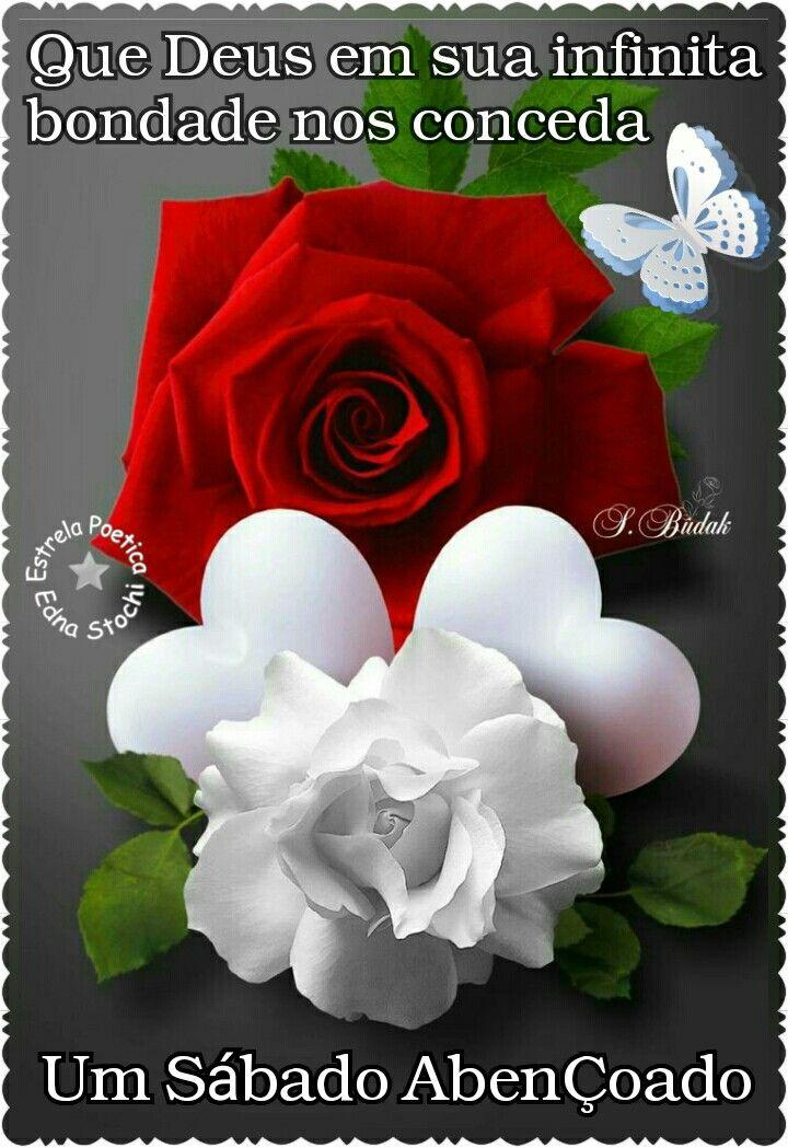 Pin De Nadir Lucimara Em Renato Amor Rosas Vermelhas Bela Rosa