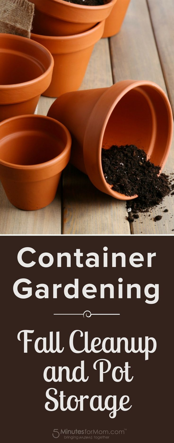 Container Gardening - Fall Cleanup and Pot Storage