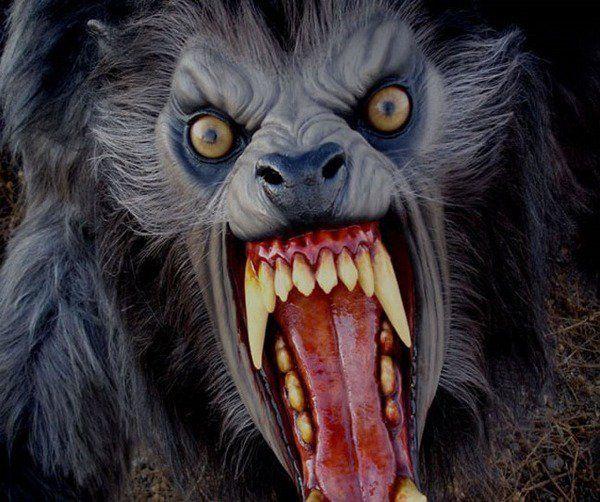 Realistic Halloween masks ideas werewolf scary halloween costumes masks
