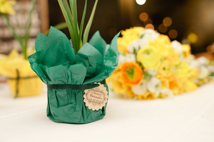 This couple grew their own daffodils as table decor and a gift.