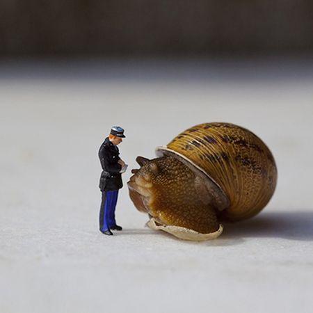 Le monde miniature de Jean-Joseph Renucci !
