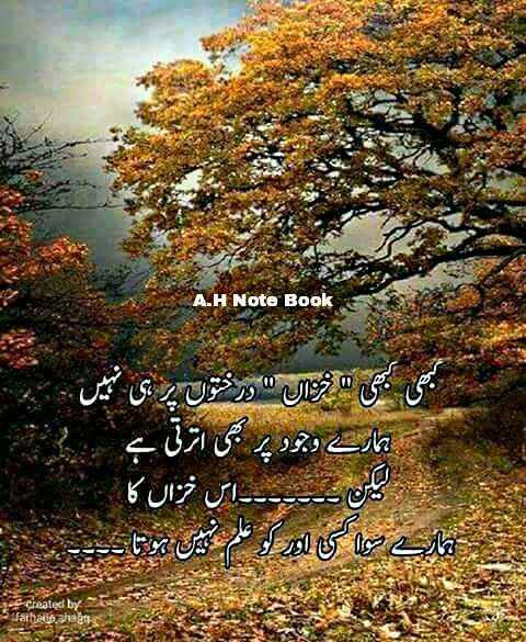 1000 Images About Shayri On Pinterest: 1000+ Images About Urdu On Pinterest