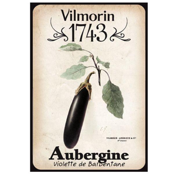 Vilmorin 1743 aubergine graines de fleurs et legumes for Vilmorin graines