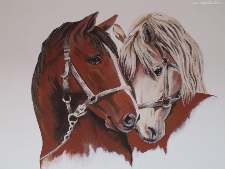 Rysunek, Konie, Łby