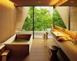 Blissful baths Japan----Not usually my style but still cool