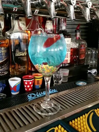 Mini fish bowl drink jds bbq nd pinterest fish bowl for Restaurants with fish bowl drinks near me
