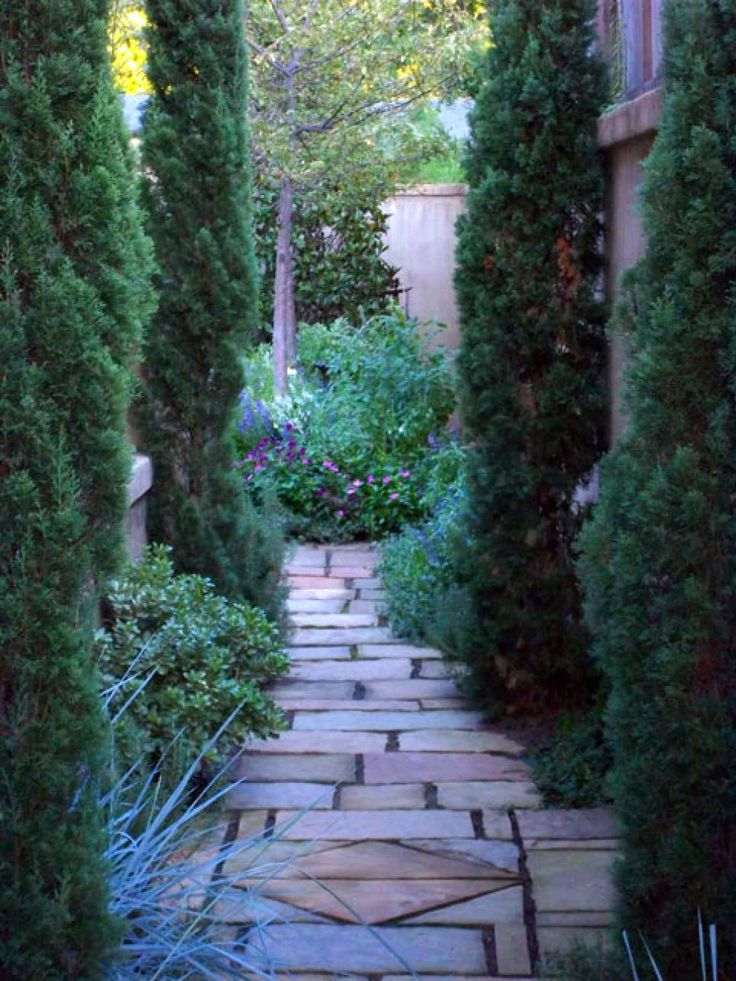 The Essential Steps To Landscape Design Gardens Beautiful And Italian Cypress Trees