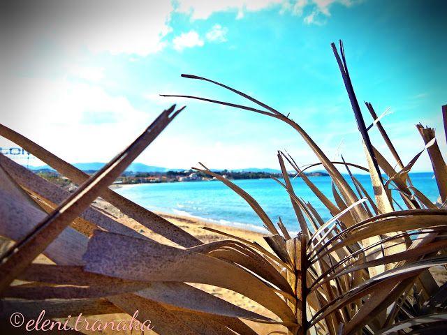 Ελένη Τράνακα: Τσιλιβί Παραλία, Ζάκυνθος / Tsilivi Beach, Zakynthos