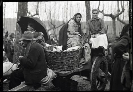 """Rut M. Anderson: ::""""Cerdo en un carro."""" Betanzos (A Coruña), 16 de enero de 1926. Archivo Hispanic Society"""