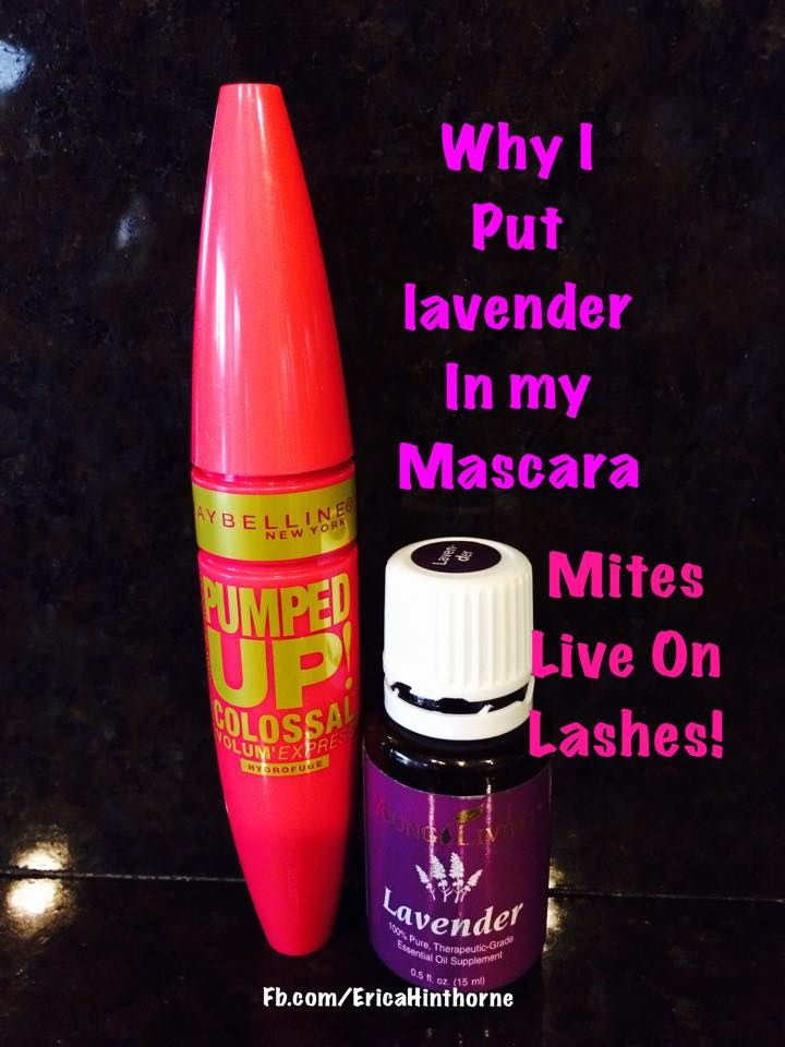 I heard all these great things about putting lavender oil in mascara. Since it came in the starter kit I bought I figured I'll try it myself.  *** It's been a month and a half. My lashes are growing like crazy!!! The bottoms are almost too long!  CONTINUE READING on my FB! CLICK the picture for the rest.