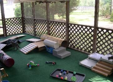 Having a puppy playroom would make any house into a doggie dream house!