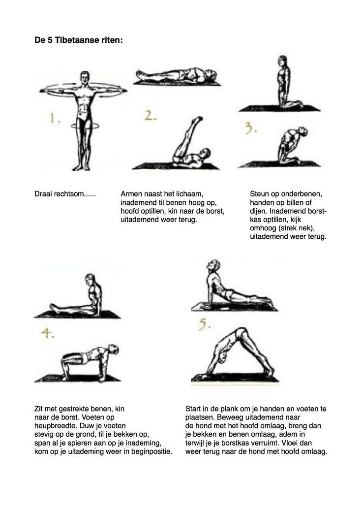 De 5 Tibetaanse riten, 5 heerlijke (intensieve) oefeningen die het hele lichaam activeren, harmoniseren, fit maken, soepel en goed doorbloed. Je kunt deze oefeningen op elk gewenst moment van de dag doen.