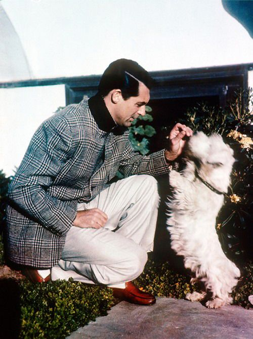Cary Grant and his dog, Archibald Leach.  PoW Check Perfection