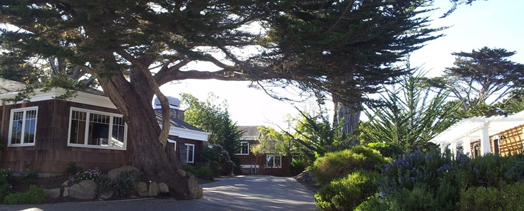 Awesome Lighthouse Lodge Cottages Pacific Grove Ca Hotels In Download Free Architecture Designs Scobabritishbridgeorg