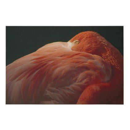 Greater Flamingo at Rest | Africa Faux Canvas Print - pink gifts style ideas cyo unique