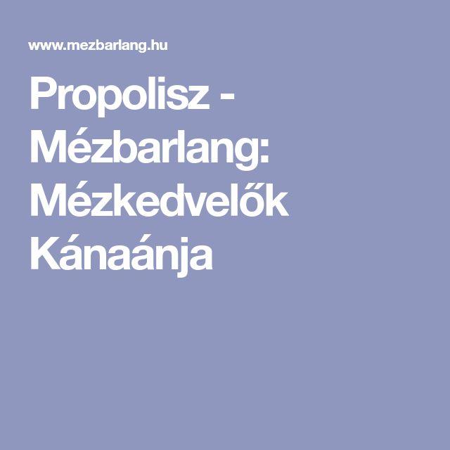Propolisz - Mézbarlang: Mézkedvelők Kánaánja