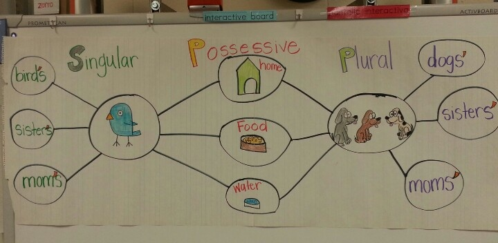 Singular & plural possessive using double bubble thinking map