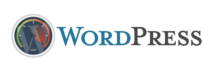 WordPress Performance Improvements That Can Go Wrong