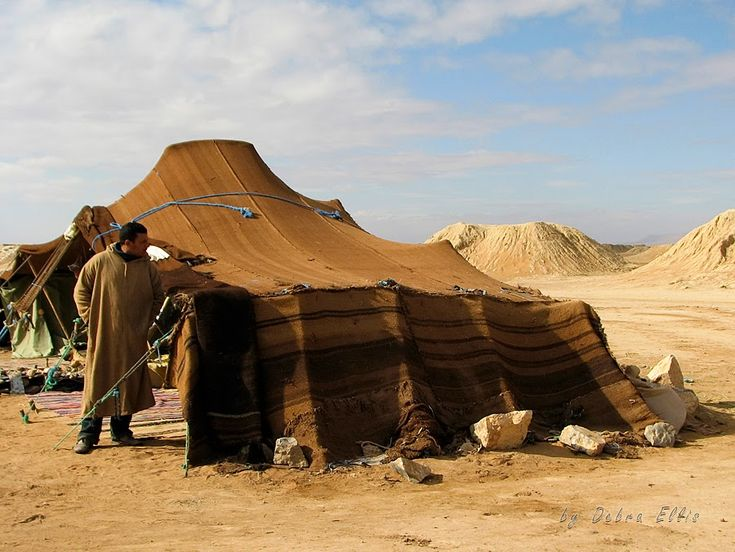a life in the desserts the egyptian bedouins Joseph hobbs managed to vividly describe social and environmental aspects of (male) bedouin life in a given environment (the desert plateaus of eastern egypt) hobbs is an objective anthropologist, an excellent narrator and a keen observer.