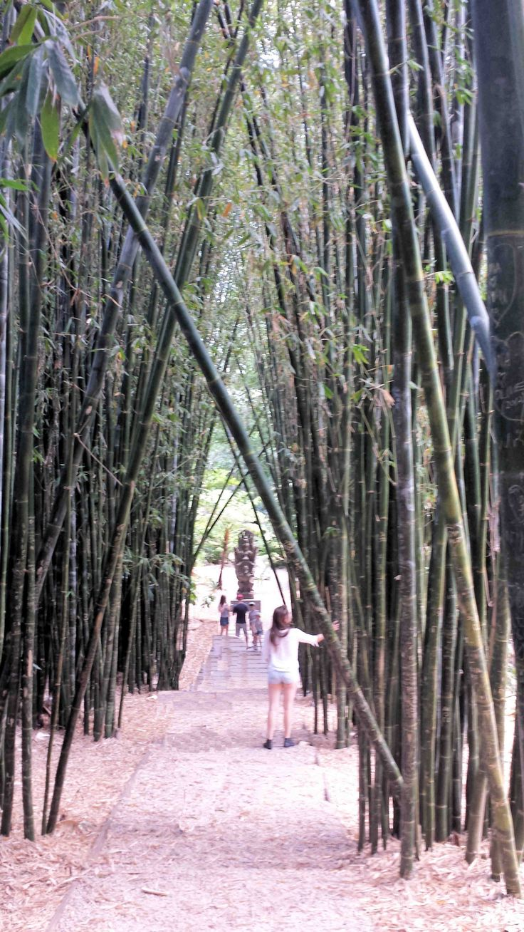 Shambahla Gardens Mullumbimby Northern NSW