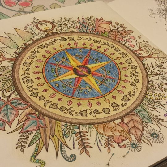 The 37 Best Coloring Compass Images On Pinterest
