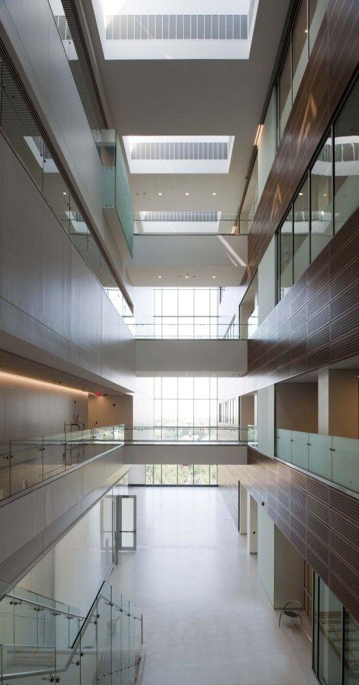Gates Vascular Institute / Yazdani Studio of Cannon Design