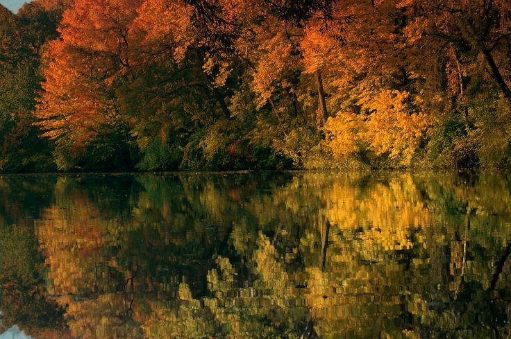 Beautiful Fall is Comming.